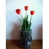 Akmenimis dekoruoti lauko ir vidaus vazonai, vazos